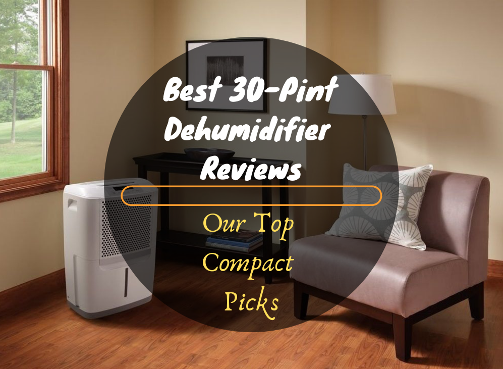 Best 30-Pint Dehumidifier Reviews featured image