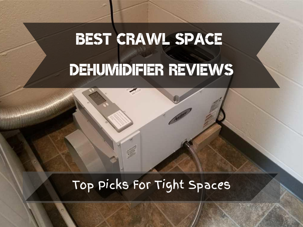 Best Crawl Space Dehumidifier Reviews