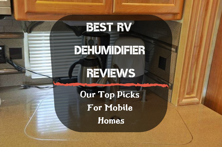 Best RV Dehumidifier Reviews featured image