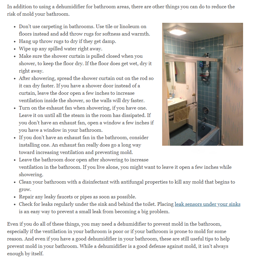 How To Prevent Mold In Bathrooms Our Complete Guide To