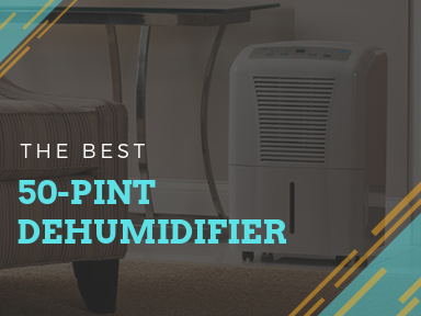 Best 50-Pint Dehumidifier