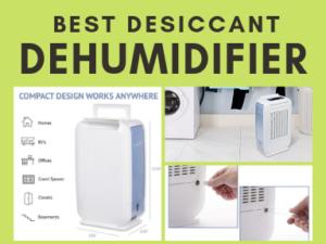 Best Desiccant Dehumidifier
