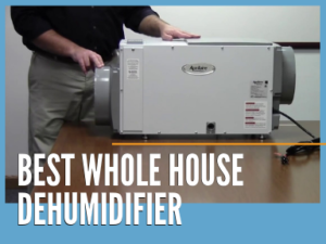 Best Whole House Dehumidifier Reviews 2019: HVAC and Portable